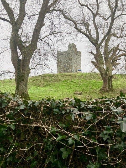 Audley's Castle near Castle Ward