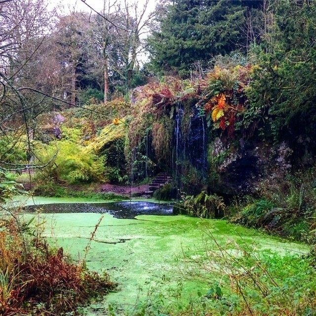 Gardens at Blarney