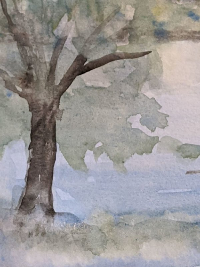 Riverside Tree