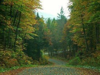 Old Indian Lake Road
