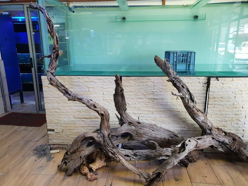 Custom Built Aquariums