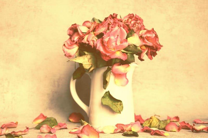 Autumn Rose Deluxe Perfume Oil | Rose | Musk | Iris