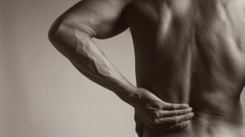 Essential Tips for Choosing the Best Chiropractor