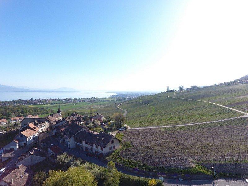 Le village de Féchy