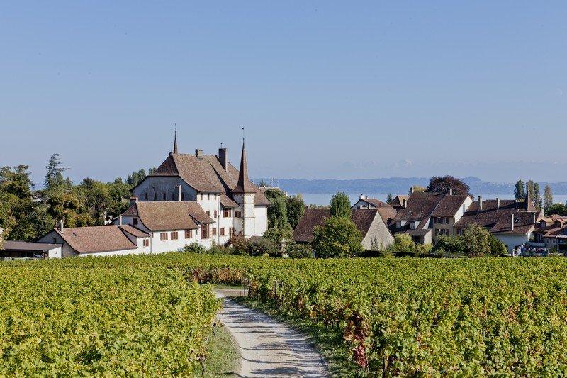 Le Château d'Auvernier situé dans le vignoble neuchatelois