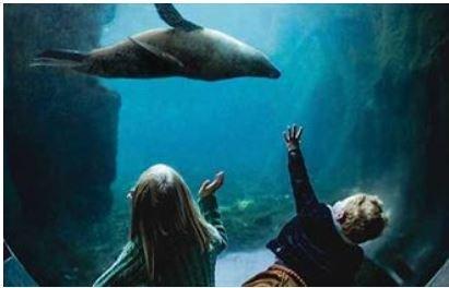 Living Coasts Zoo