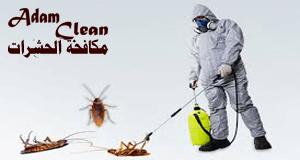 شركة مكافحة الحشرات في رابغ