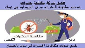 شركات رش المبيدات بتبوك