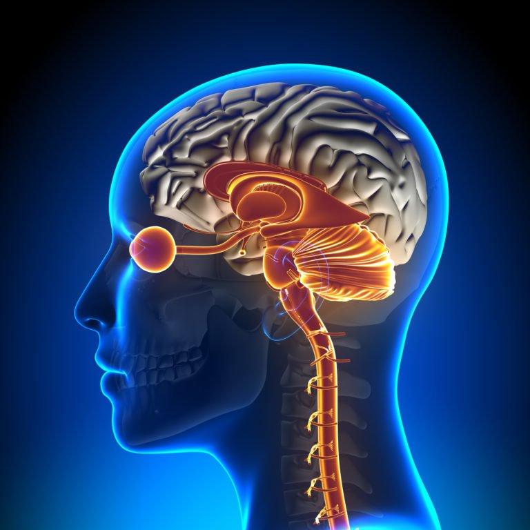 brainspotting