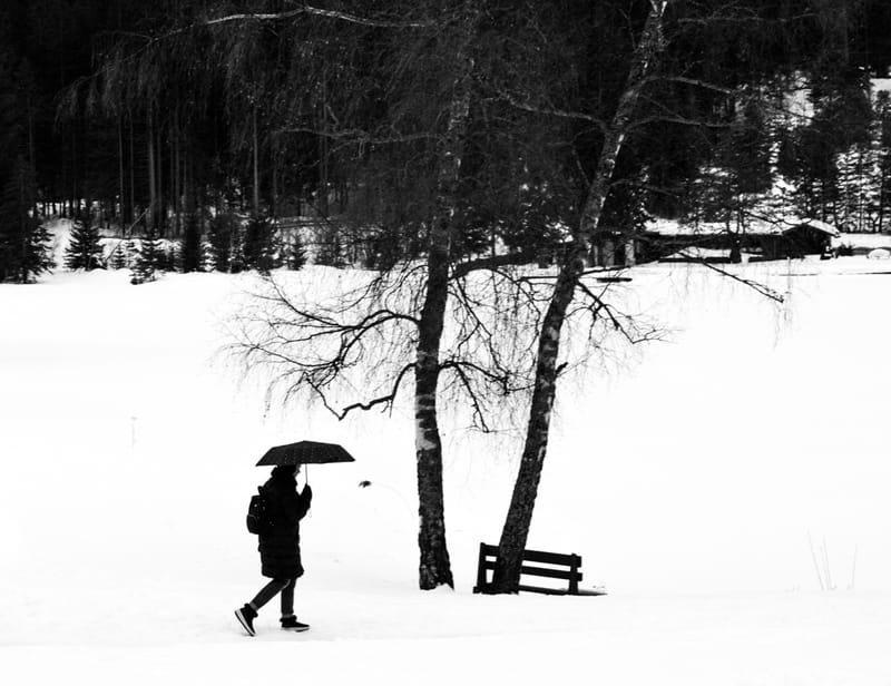 'Snow is wet'