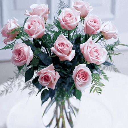 Hoa hồng phấn tặng sinh nhật bạn thân