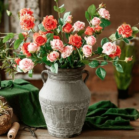 Hoa hồng tỉ muội tượng trưng cho tình bạn