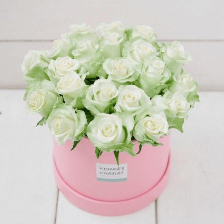 Hình ảnh hoa hồng xinh đẹp được phái nữ yêu thích