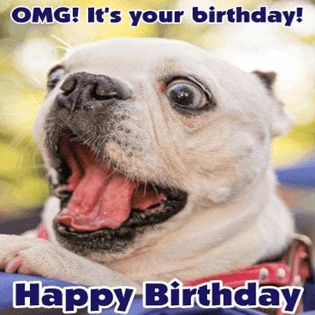 Hình ảnh chúc sinh nhật hết sức đáng yêu dành cho bạn bè online