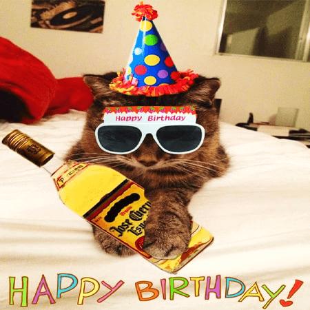 Hình ảnh chúc mừng sinh nhật hài hước