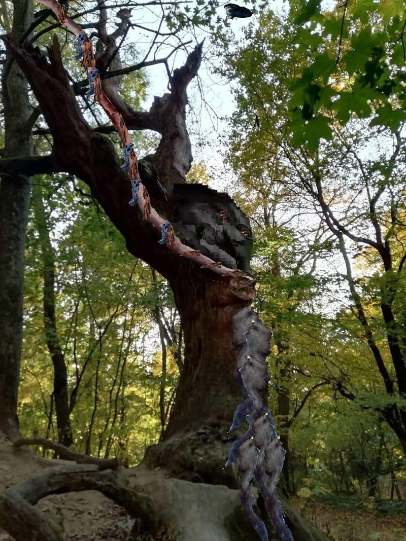 Killing trees