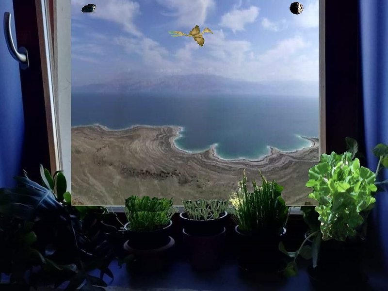 Window on ancient wonder