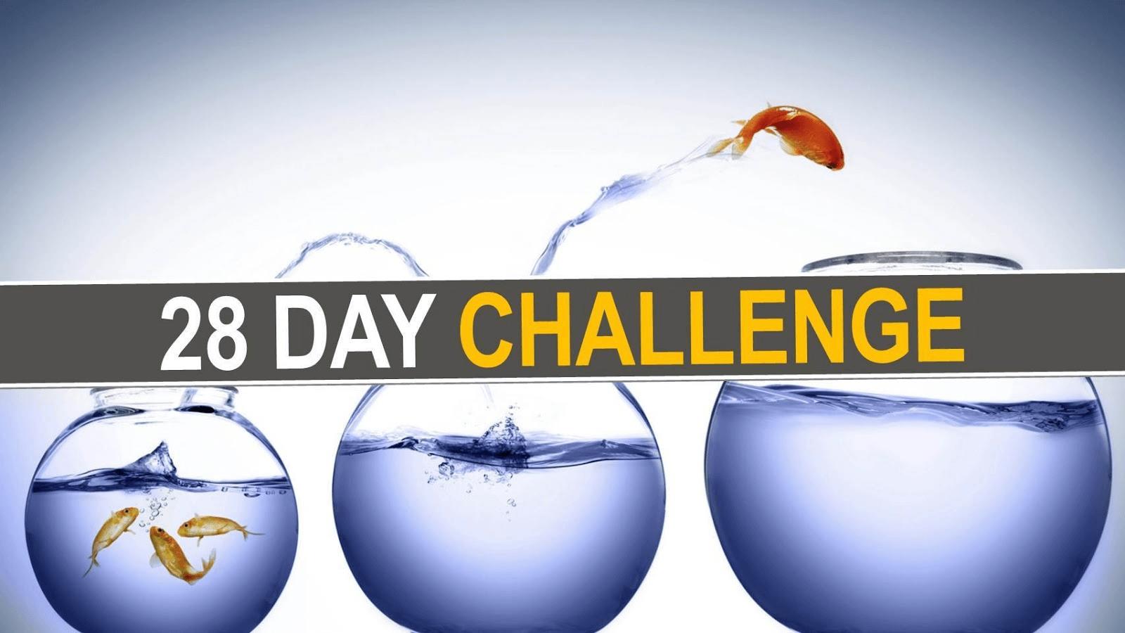 28 mental wellness challenge