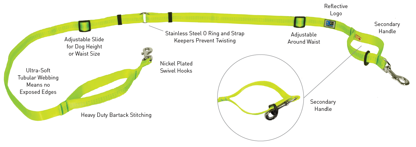 Beyond Control Leash features