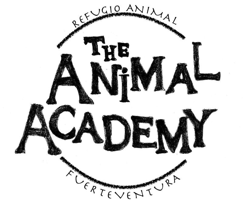 The Animal Academy
