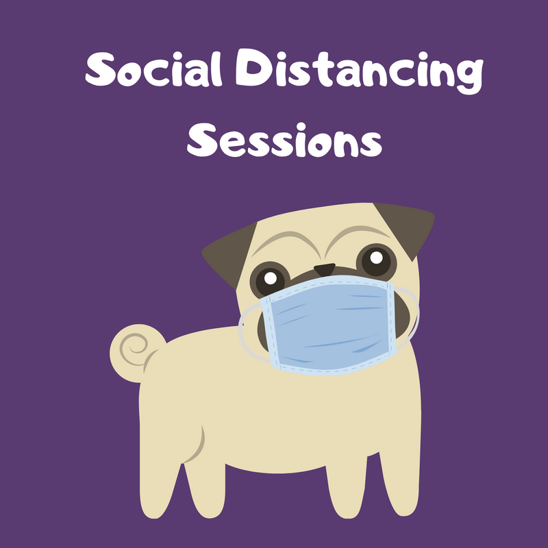 Social Distancing Training Sessions