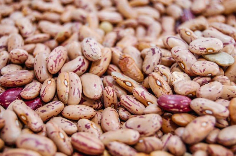 Beans, Lentils & Peas