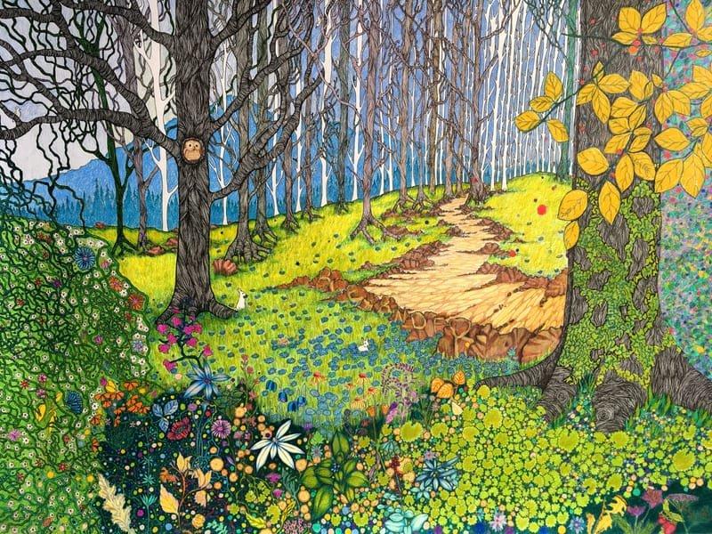 Colour Illustration