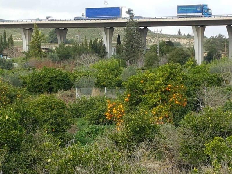 06/02 fietstocht tot einde fietspad na Murcia