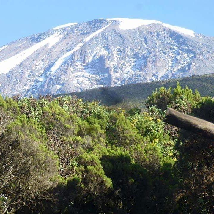 Восхождение на Килиманджаро 5895, Танзания, Африка