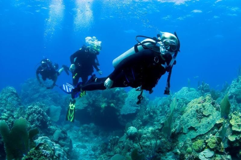 What to Know about Scuba Diving Certification
