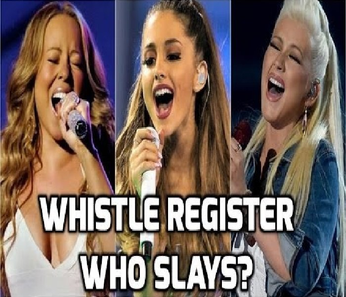 About whistle register
