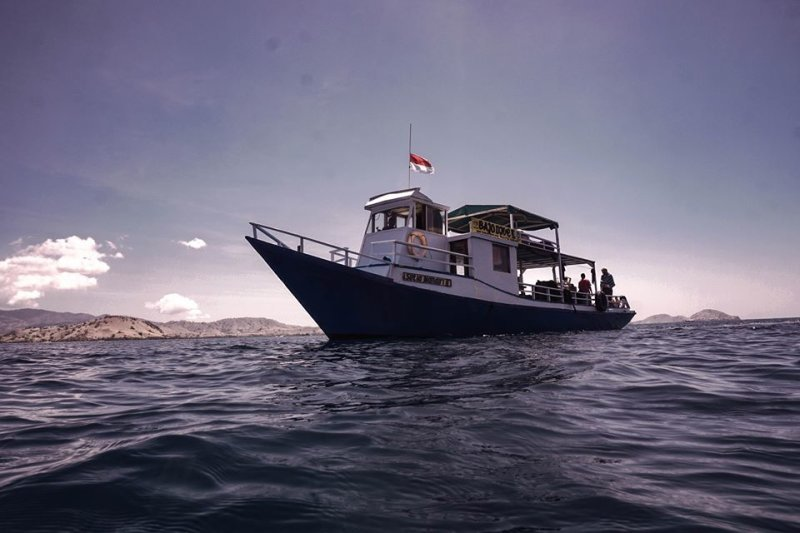 Daily Boat Diving