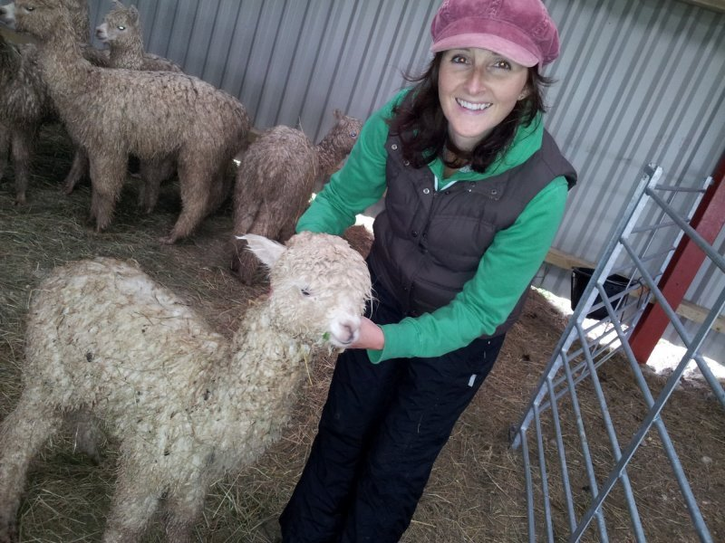 Jo and a soggy Sweep, just before first shearing