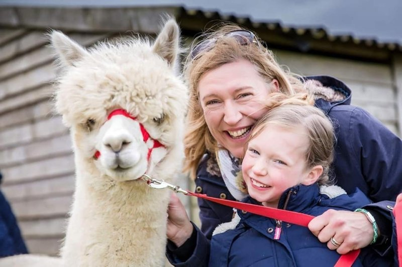 Alpaca Walkers with Casper