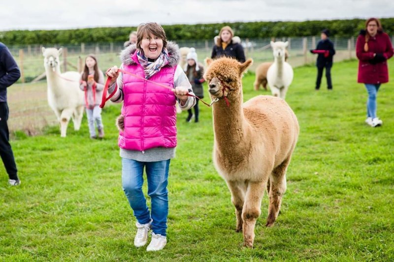 A happy visitor on an Alpaca Walk - Walking Freddie