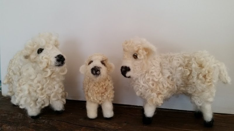 Needlefelted Greyface Dartmoor Sheep - by Jo