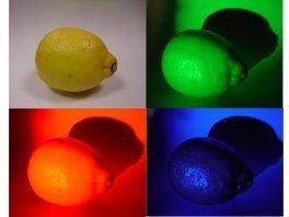 """Question n°37 : Pourquoi un citron """"jaune"""" est-il jaune et peut changer de couleurs ?"""
