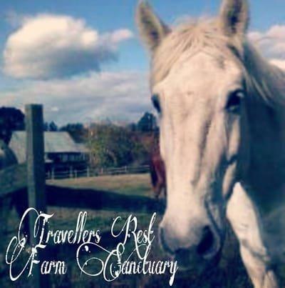 Travellers Rest Farm Sanctuary