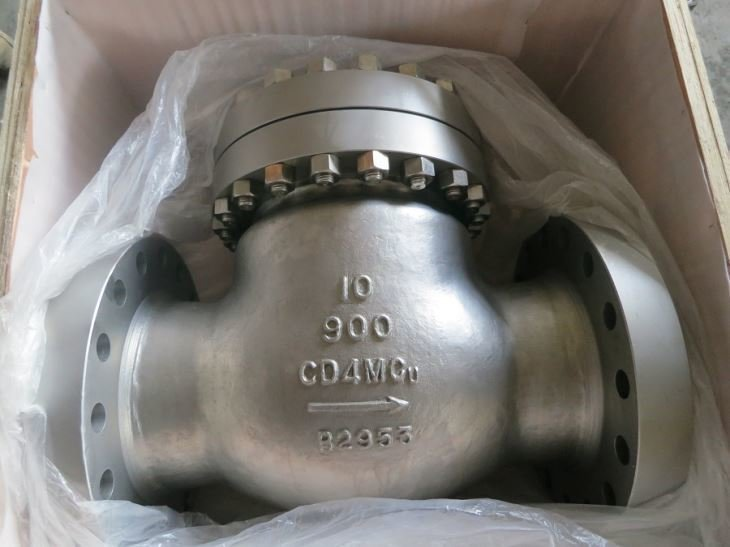 FCT CD4MCu Check Valve