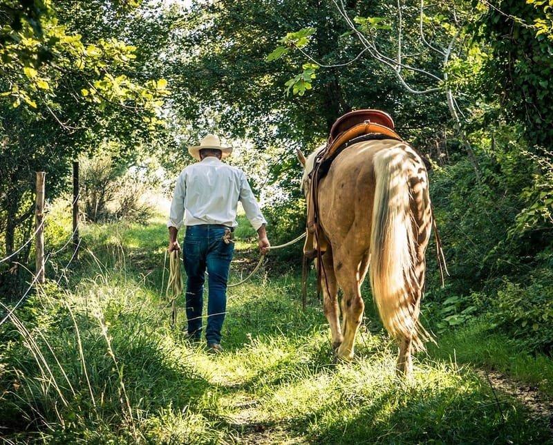 Horsemanship - Maneggio & Trekking