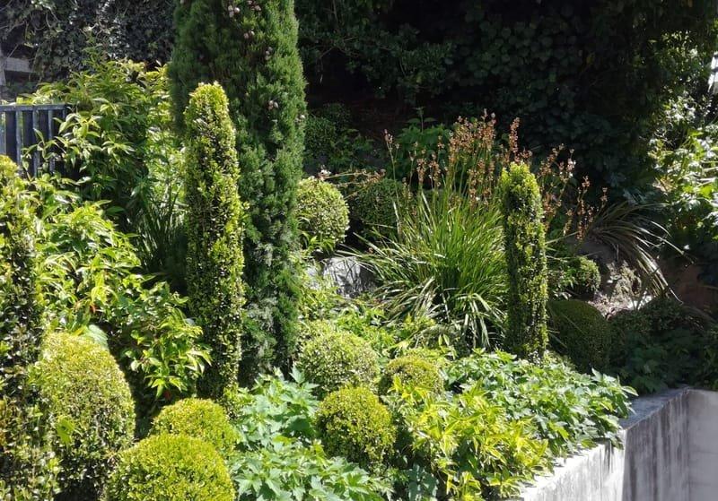 Regular garden maintenance