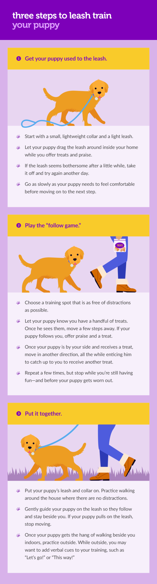 how-to-leash-train-your-puppy-002