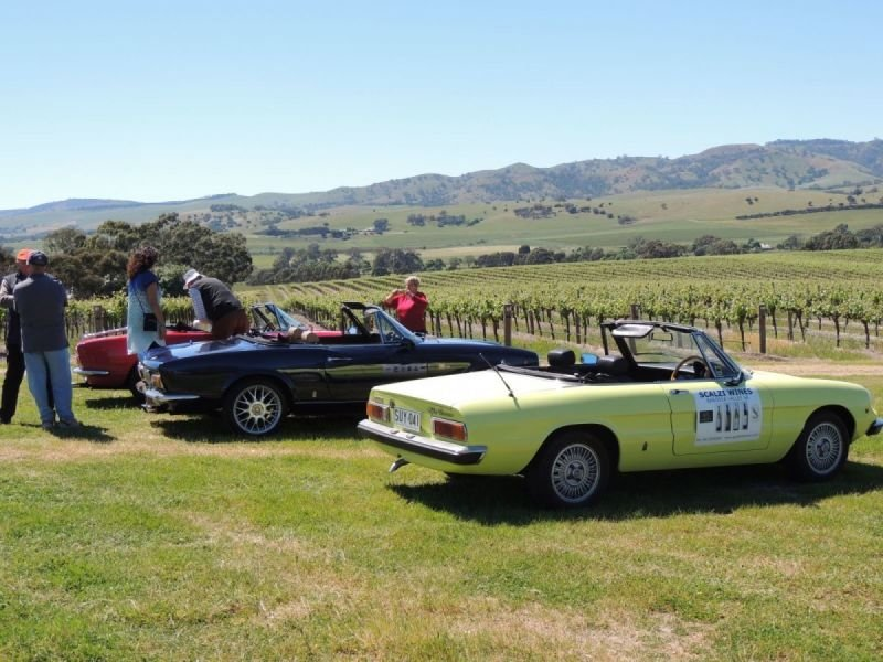 Italian Made Cars-Porchetta and Car Display Take 2 at God's Hill Winery