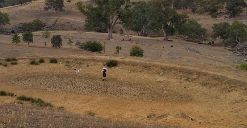 Dry dams