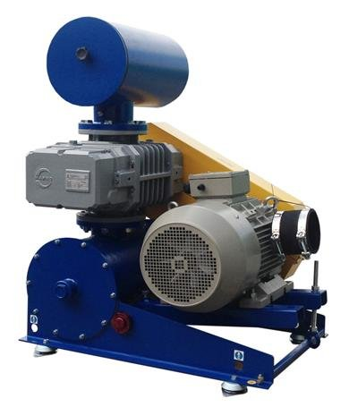 Rotary Lobe Blowers