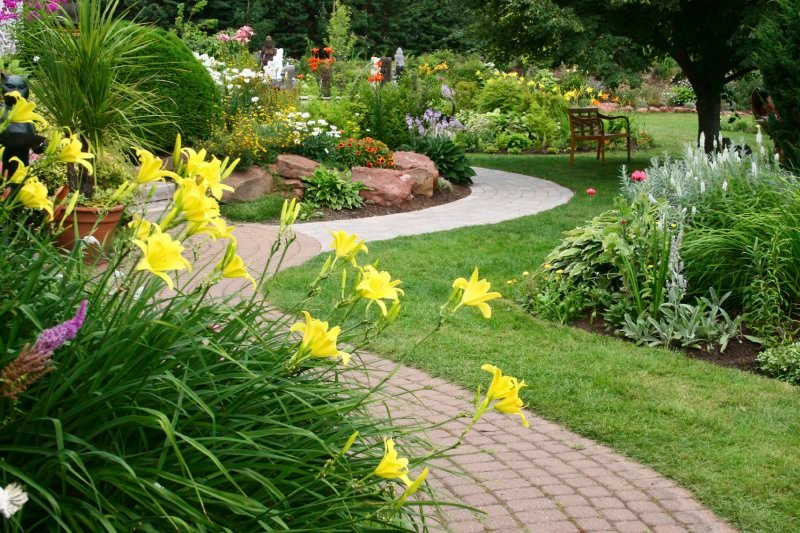 Things to Consider a Good Lawn Care Service