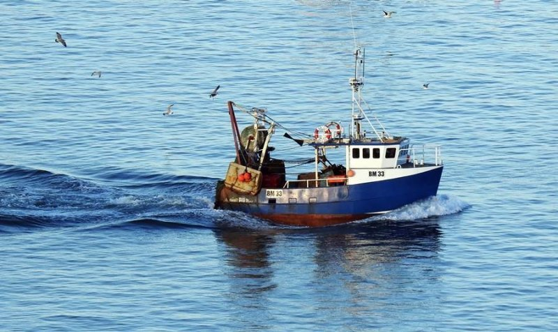 Day Boat Fresh Fish Storage