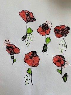 butterfly poppys