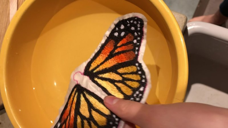 Monarch in Process