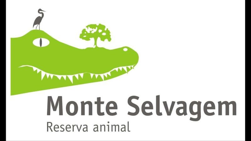 Monte Selvagem